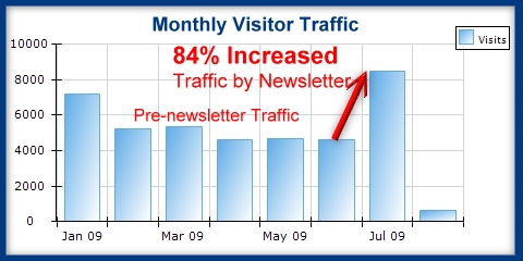 Monthly Patient Newsletter Web SiteTraffic Results